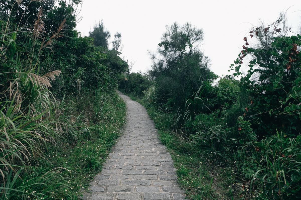 野柳地質公園を登る